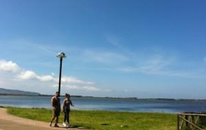 Lagoon Orbetello 2