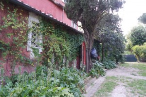Casa Barzini -  Cooking in the country